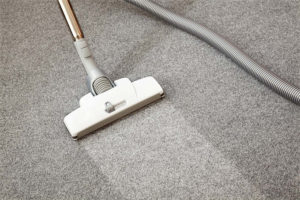 How to clean your carpet like a Pro - Hi-Glitz